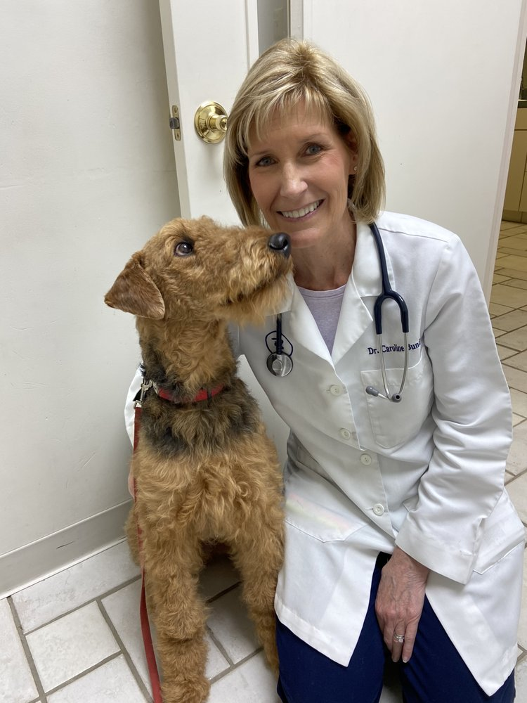 Timberlake Veterinary Hospital