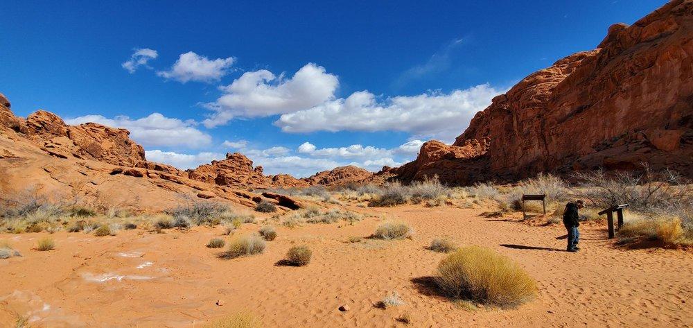 Ultimate Desert Adventures: 250 S Moapa Valley Blvd, Overton, NV