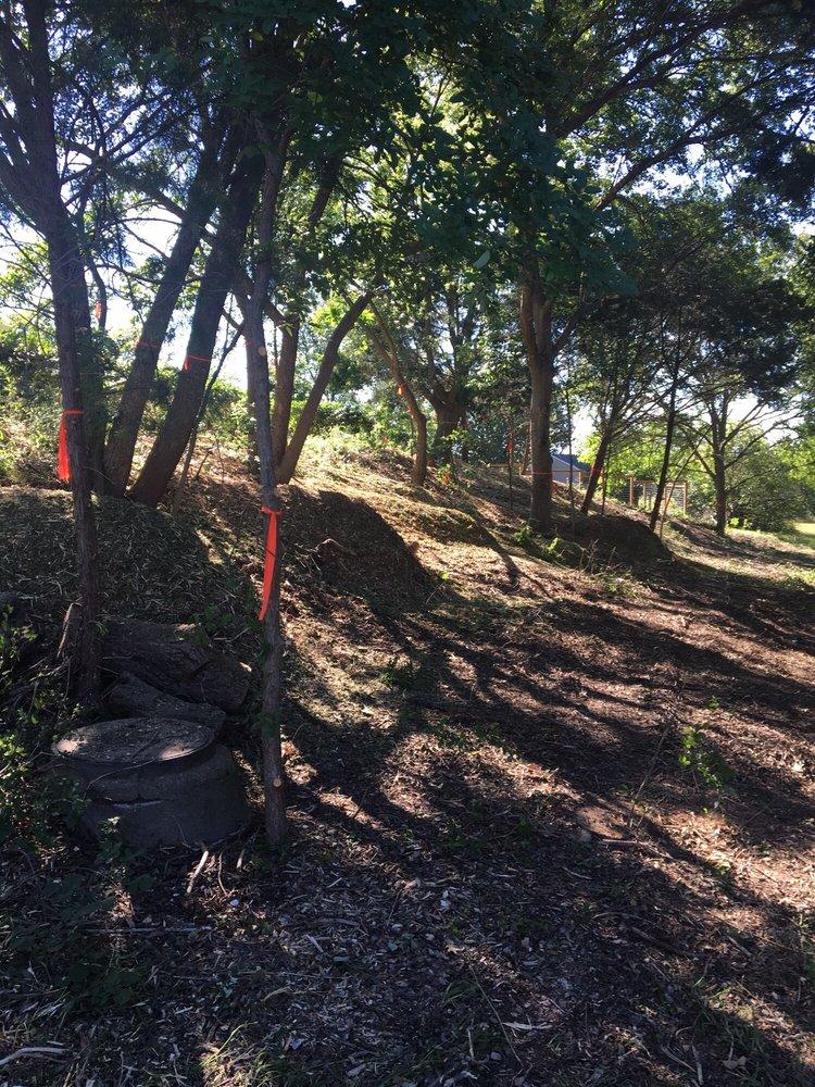 Chuy's Tree Service: Lorena, TX