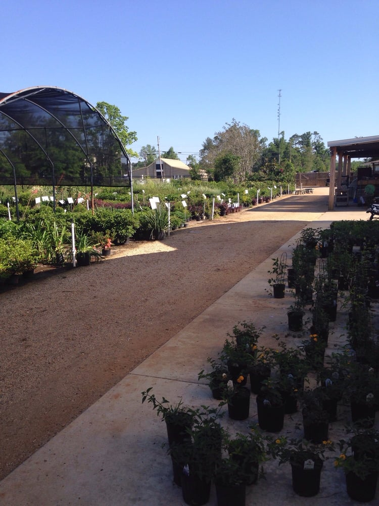 Barretts Garden Center: 127 Old Hwy 98 E, Columbia, MS
