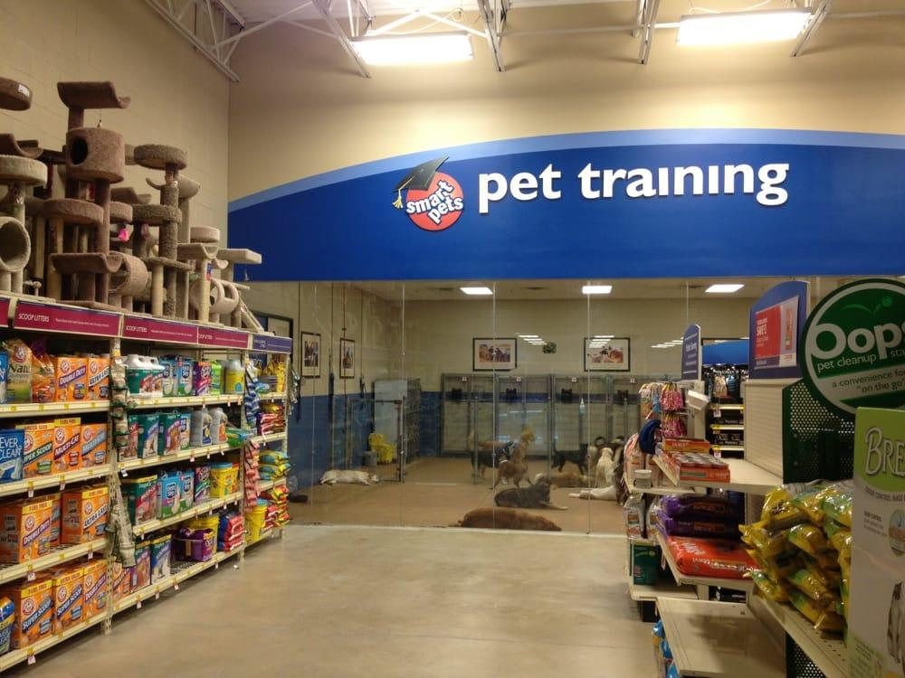 Petsmart Service Dog Training