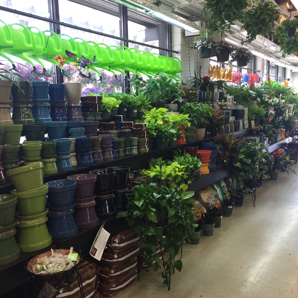 Get directions, reviews and information for Naples Fertilizer & Garden Centers in Naples, atrociouslf.gqon: 14th St N, Naples, , FL.