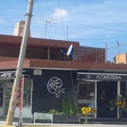 Circuito Juan Pablo Ii : Floristería expres arte florists circuito juan pablo ii 5301