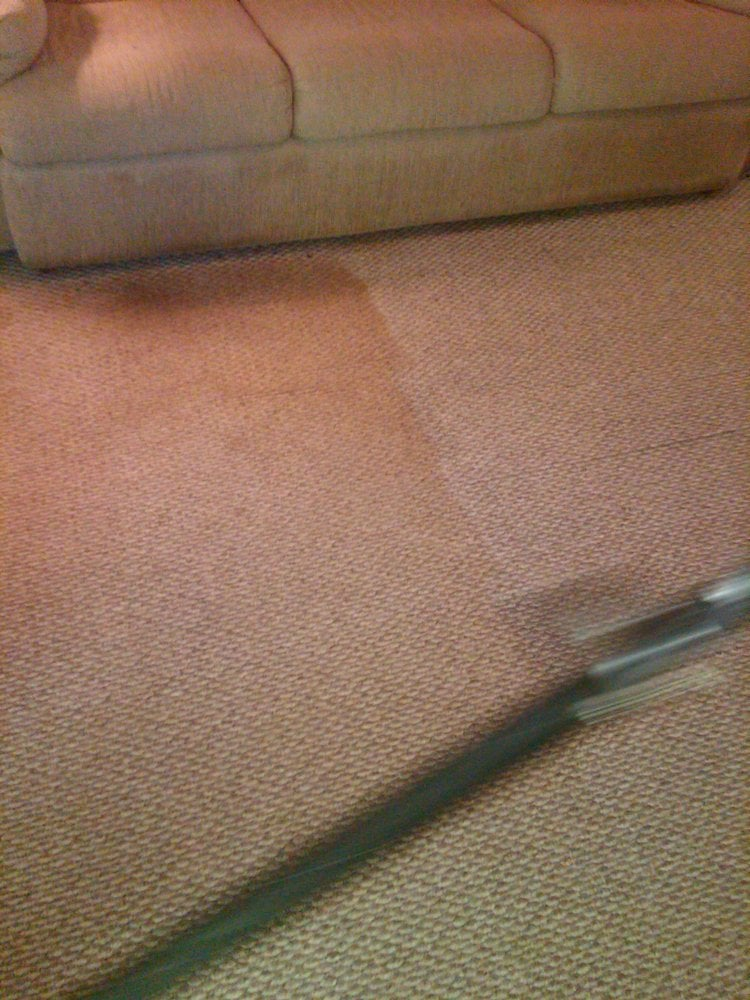 Eco-Scrub Carpet & Floor Care: 5282 Williamson Zebulon Rd, Williamson, GA