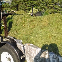 Desperate Landscapes and Lawn Care 49 Photos Landscaping