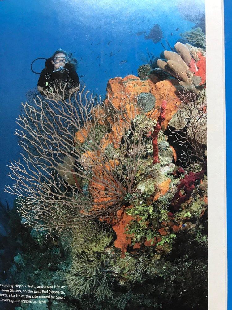 Gigglin' Marlin Dive & Swim: 4502 Almeda Rd, Houston, TX