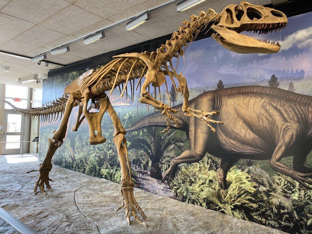 Dinosaur National Monument: 11625 E 1500th S, Jensen, UT