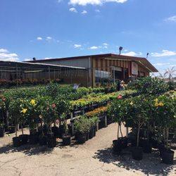 Houston garden centers 21 photos 13 reviews nurseries gardening 15427 interstate 45 s Houston garden centers houston tx