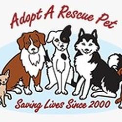 Photo of Animal Adoption - Las Vegas, NV, United States