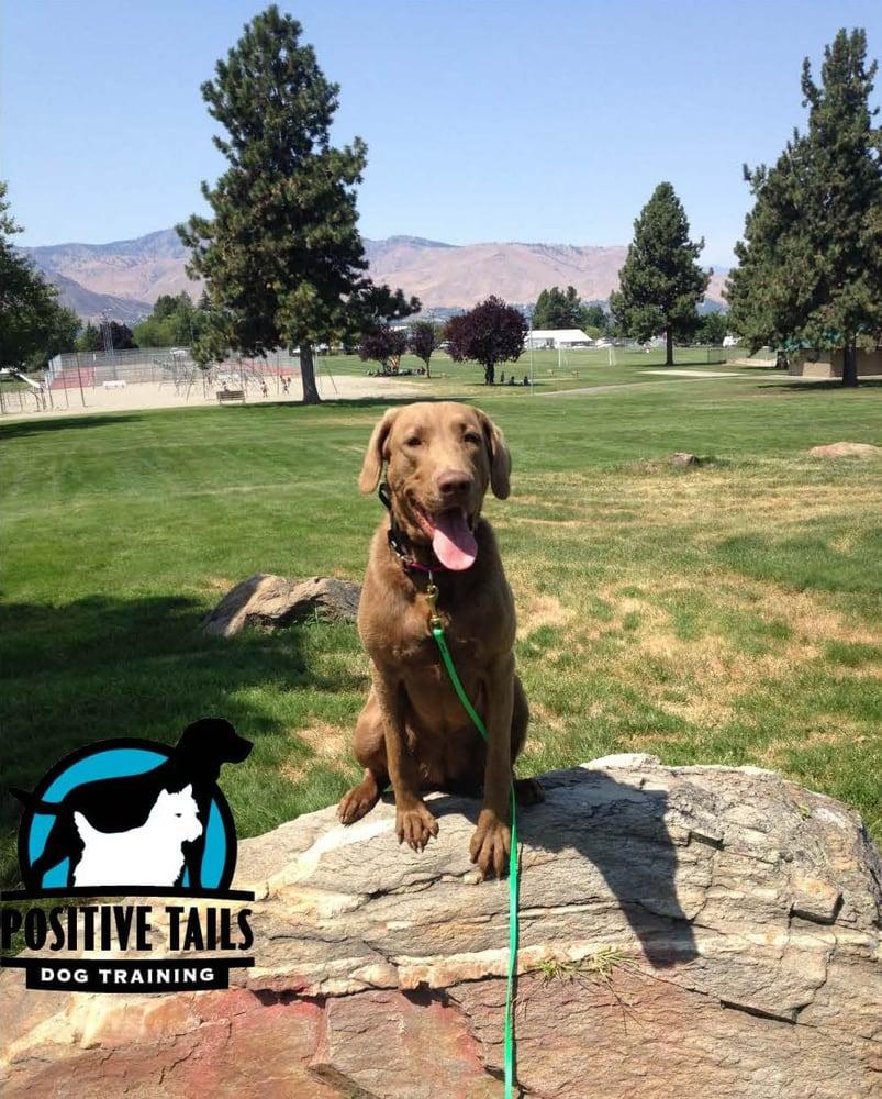 Positive Tails Dog Training Wenatchee Wa