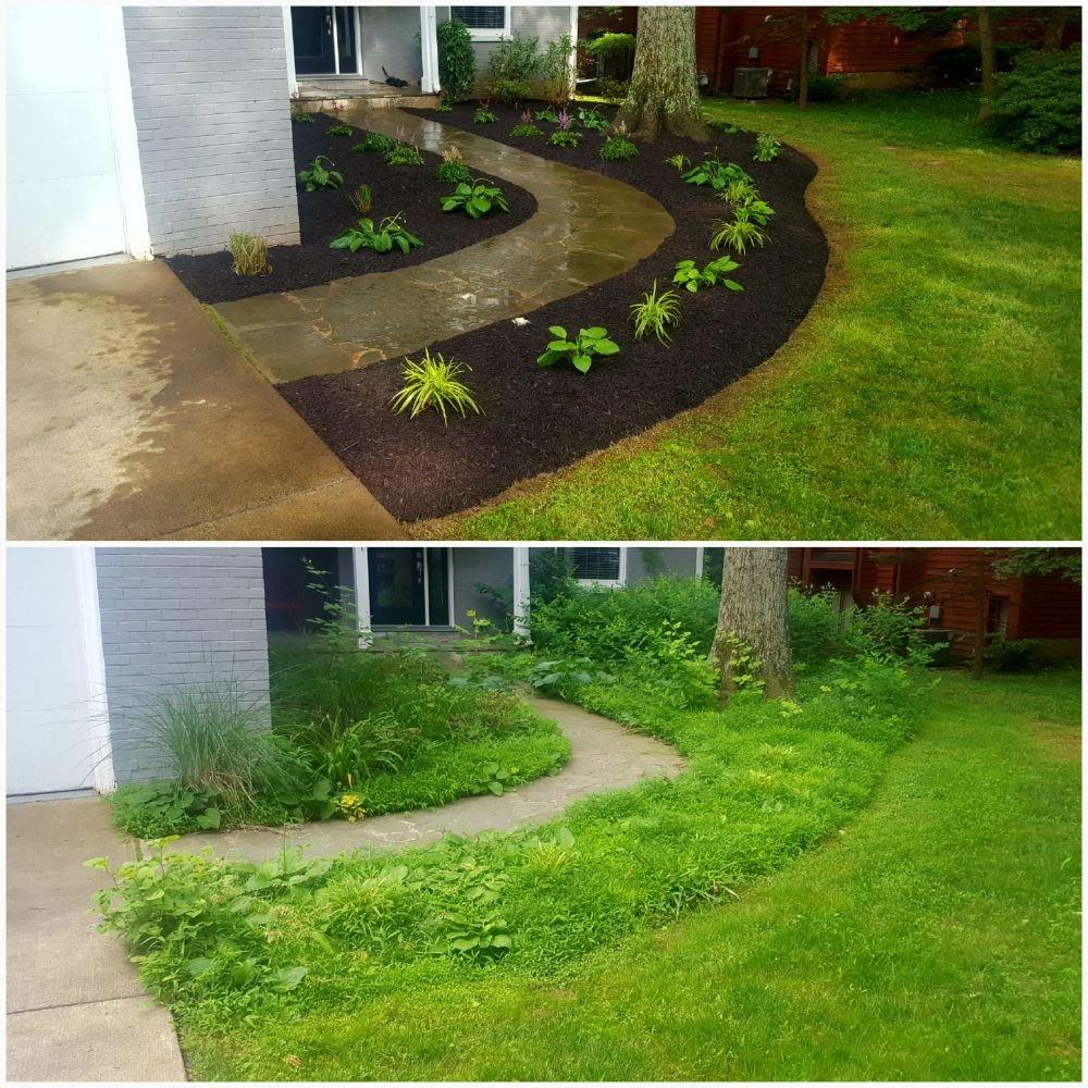 HG Grass Care: Herndon, VA