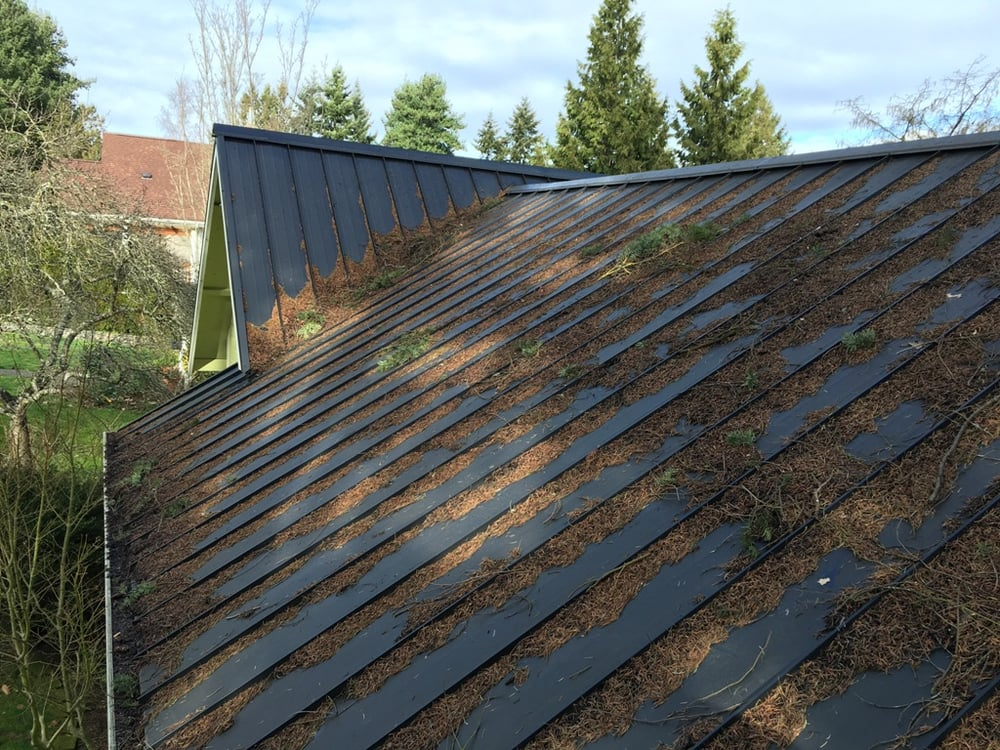 A Fine Reflection Metal Roof Cleaning In West Seattle Yelp