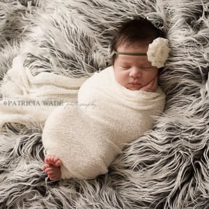 Patricia Wade Photography: Midland, TX