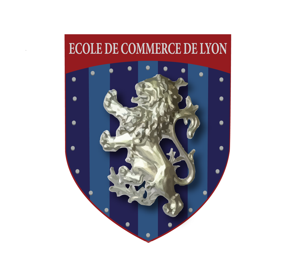 ecole de commerce de lyon - colleges  u0026 universities