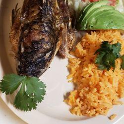 Top 10 Best Taco Restaurants Near Libertyville Il 60048