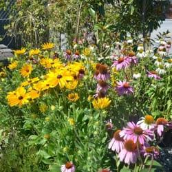 Southwest garden supplies ltd 17 photos nurseries for Garden accessories canada