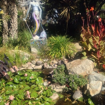 San Diego Botanic Garden 701 Photos 248 Reviews Botanical Gardens 230 Quail Gardens Dr