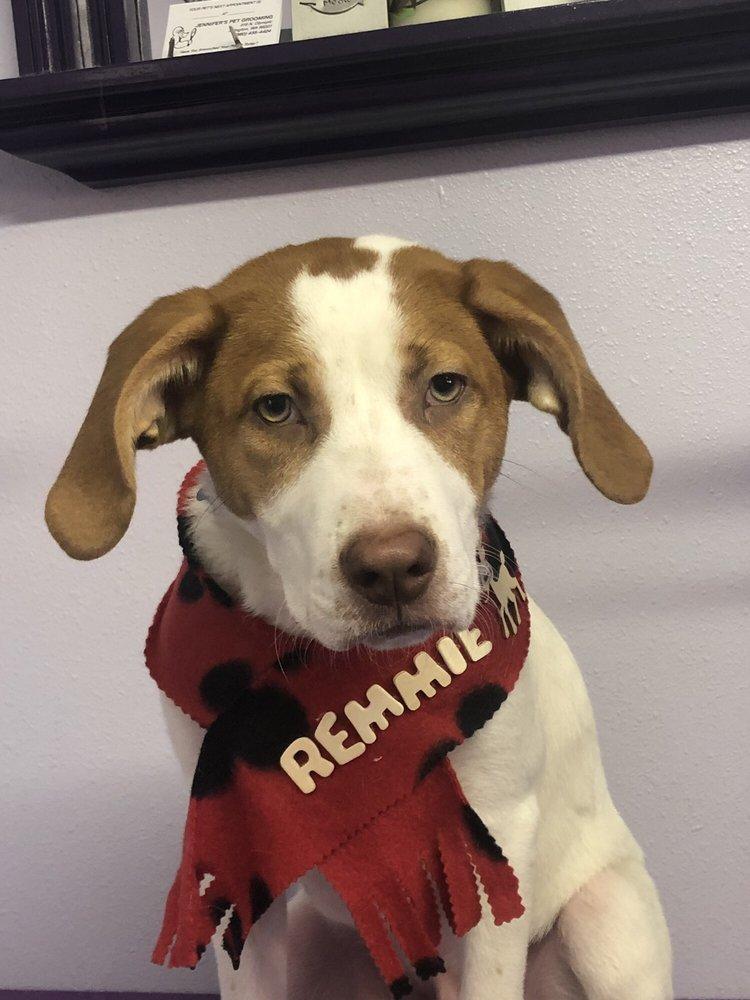 Jennifer's Pet Grooming: 419 N Olympic Ave, Arlington, WA