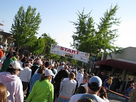 The 31st Annual Great Race - Los Gatos Rotary