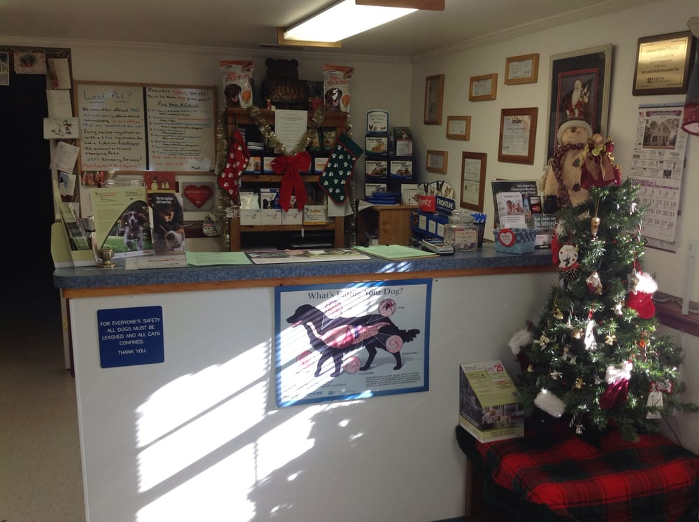 Lonestar Animal Hospital PA: 10211 Sharptown Rd, Mardela Springs, MD