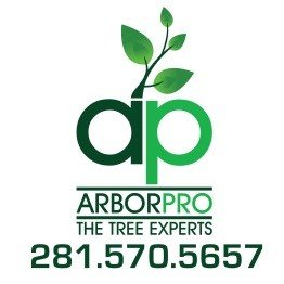 Arbor Pro The Tree Experts