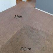 elite carpet care