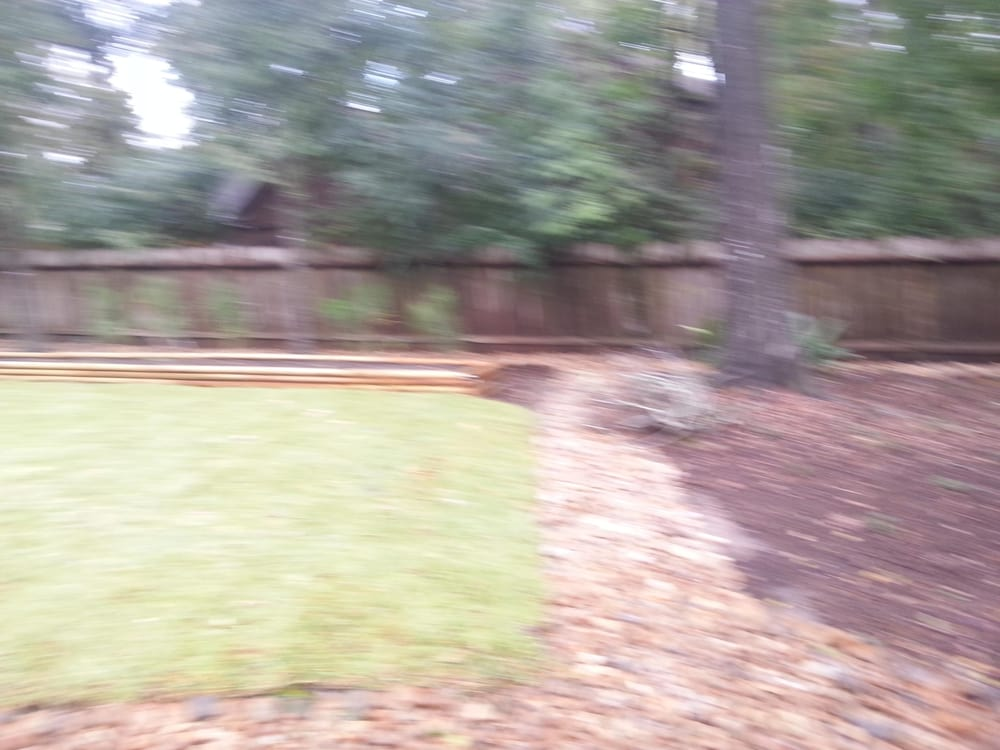Photo of George's Landscaping and Tree Service - Conroe, TX, United States.  we - George's Landscaping And Tree Service - Tree Services - Conroe, TX