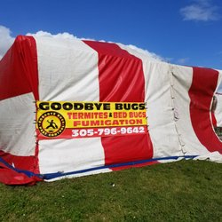 Photo of Goodbye Bugs Pest Control - Miami FL United States : tent fumigation miami - memphite.com