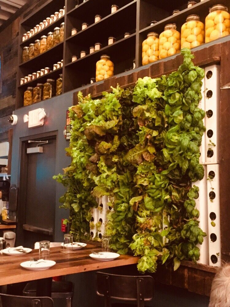 Living wall! So beautiful and awesome. - Yelp