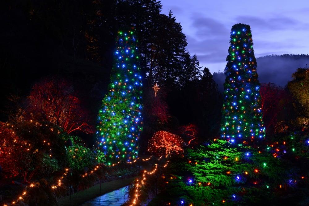 photo of cvs sightseeing victoria bc canada butchart gardens holiday lights tour