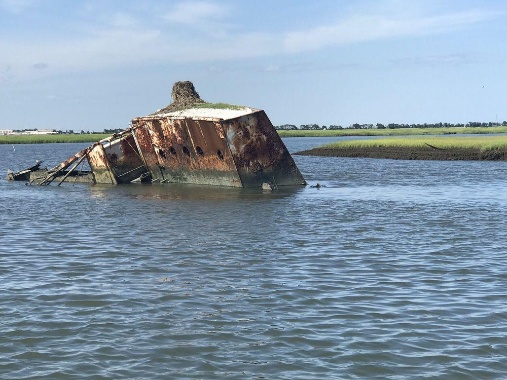 Skimmer Salt Marsh Safari: Ocean Dr And Fish Dock Rd, Cape May, NJ