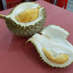 King fruits durian greengrocers 11 balestier rd little india photo of king fruits durian singapore singapore ccuart Image collections