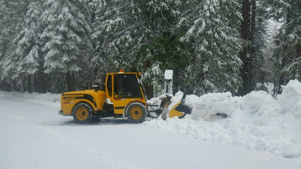 Snider's Tree, Stump and Snow Removal: 81 Summit Level Rd, Camp Connell, CA