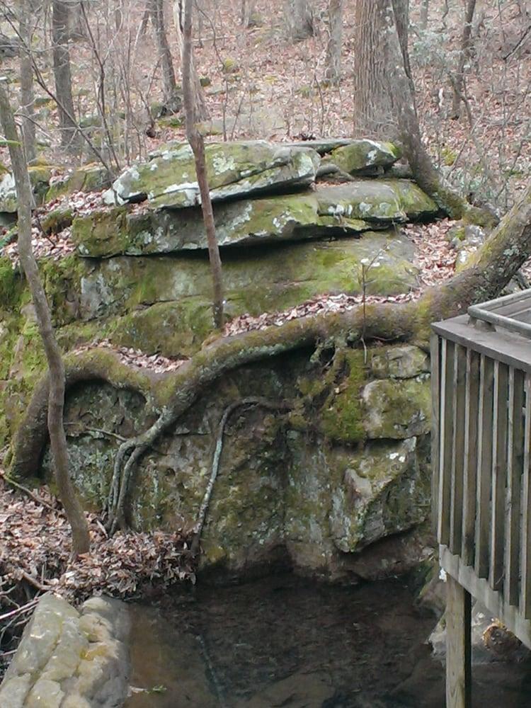 Azalea Cascade Falls Trail: 7104 Desoto Pkwy NE, Fort Payne, AL