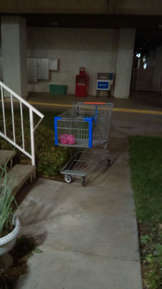 Shopping carts on the grounds are a common. - Yelp