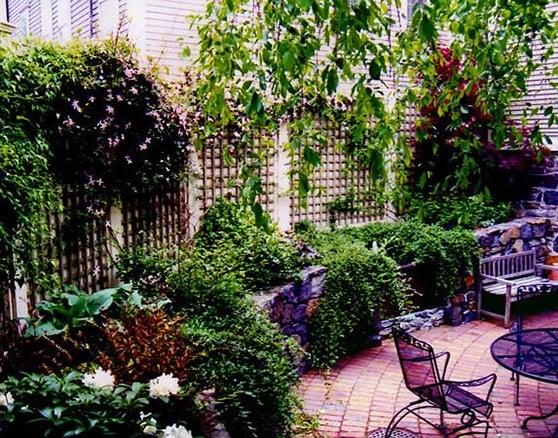 City Garden In Historic Neighborhood Painted Lattice