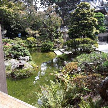 Japanese Tea Garden - 4408 Photos & 1258 Reviews - Tea Rooms - 75 ...