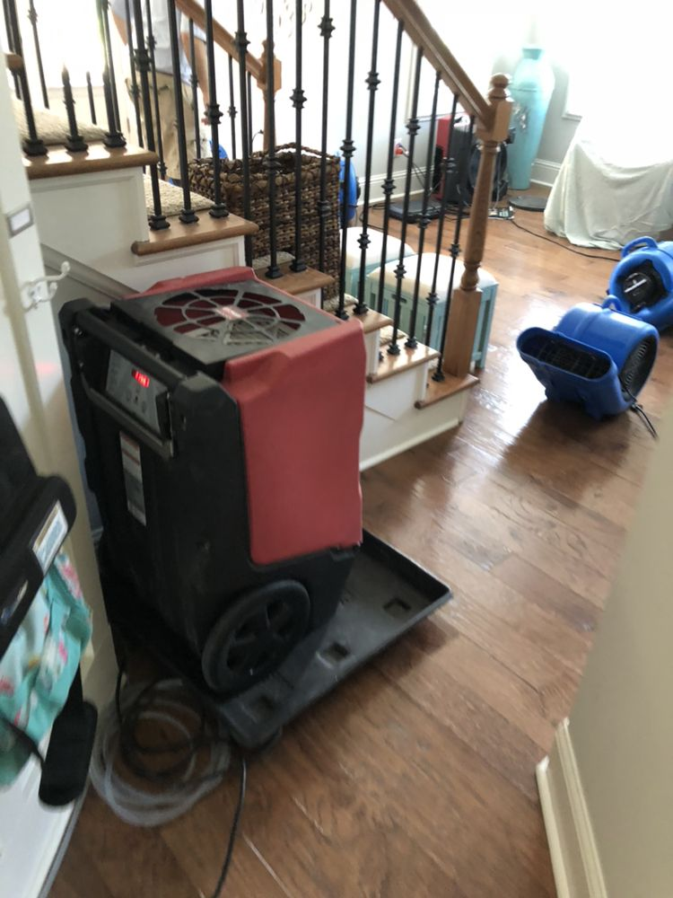 Champion Cleaning Systems: 3010 Poplar Rd, Sharpsburg, GA