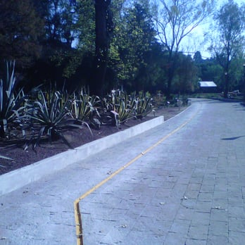Jard n bot nico chapultepec 55 fotos parques y for Jardin botanico numero telefonico