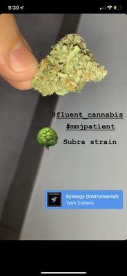 Fluent Cannabis Dispensary - North Miami Beach 175 NW 167th
