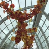 Chihuly Garden And Glass 8173 Photos 1527 Reviews
