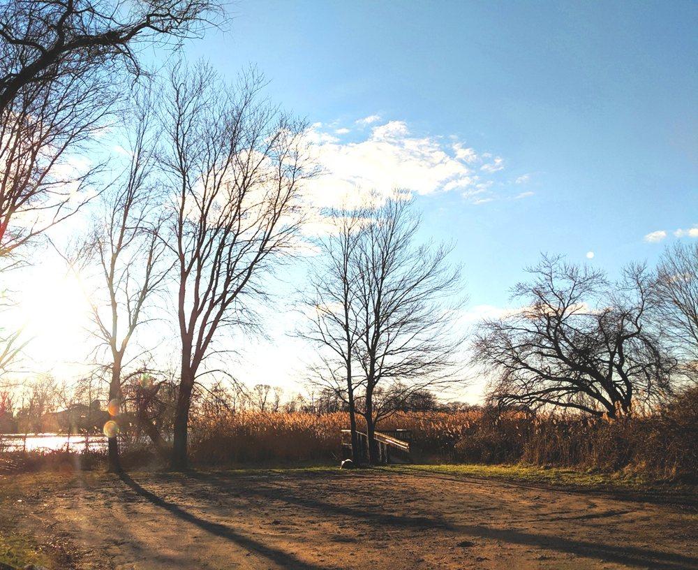 Mannington Marsh Wildlife Refuge Observation Tower: Compromise Rd & Salem Woodstown Rd, Mannington Township, NJ