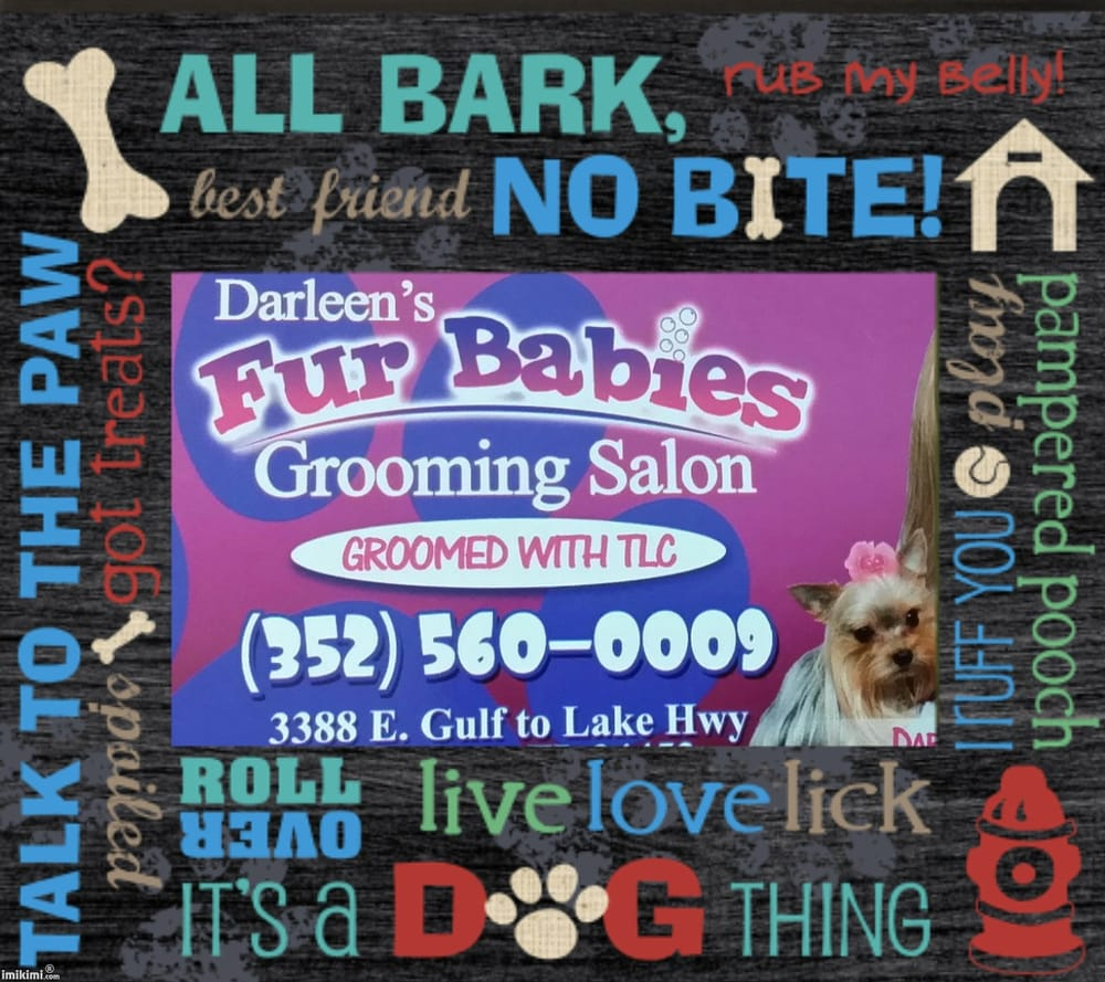 All About Cats And Dogs Ocala