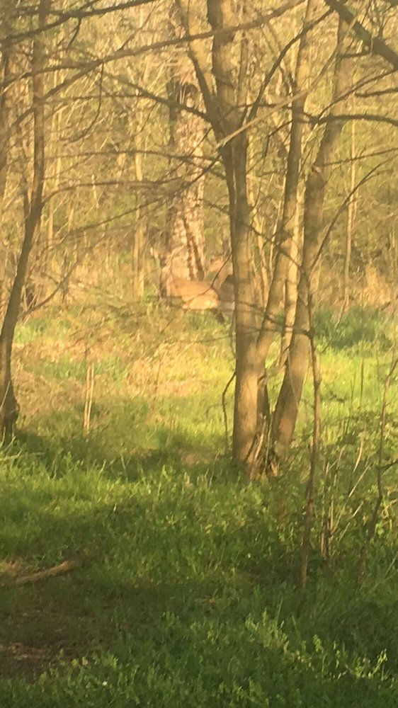 Horse Pen Run: 2764 West Ox Rd, Herndon, VA
