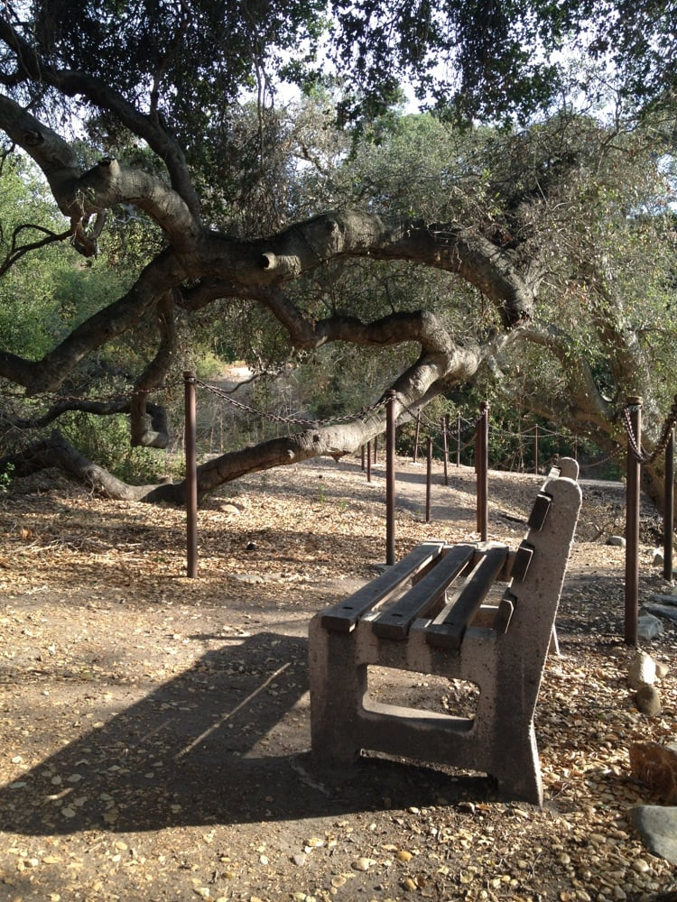 Oak Tree Park: 115 Sea Country Ln, Rancho Santa Margarita, CA
