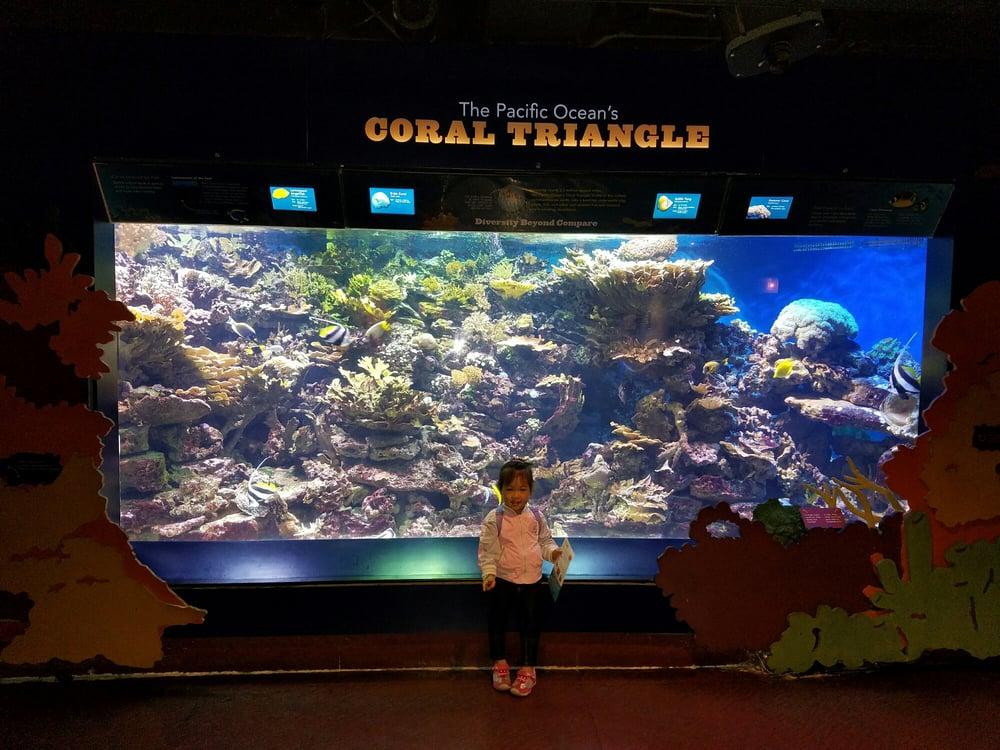 Photos For The New York Aquarium Yelp