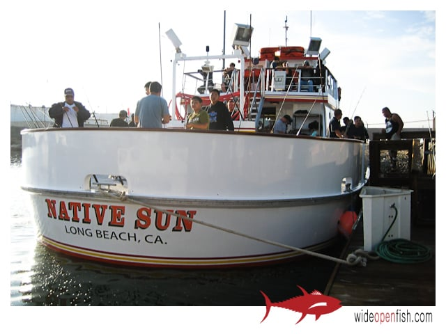 Photos for long beach sportfishing yelp for Long beach sport fishing