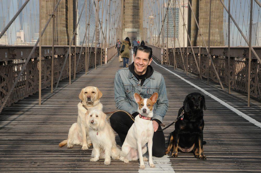 Dogboy NYC: 362 Furman St, Brooklyn, NY