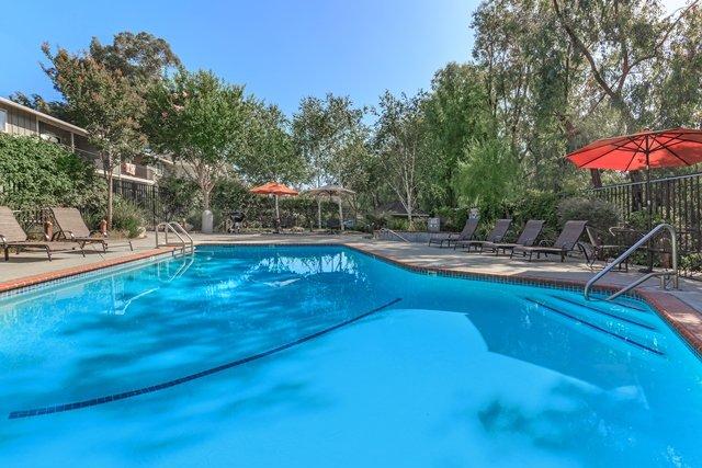 Los Gatos Heights: 226 Edelen Ave, Los Gatos, CA
