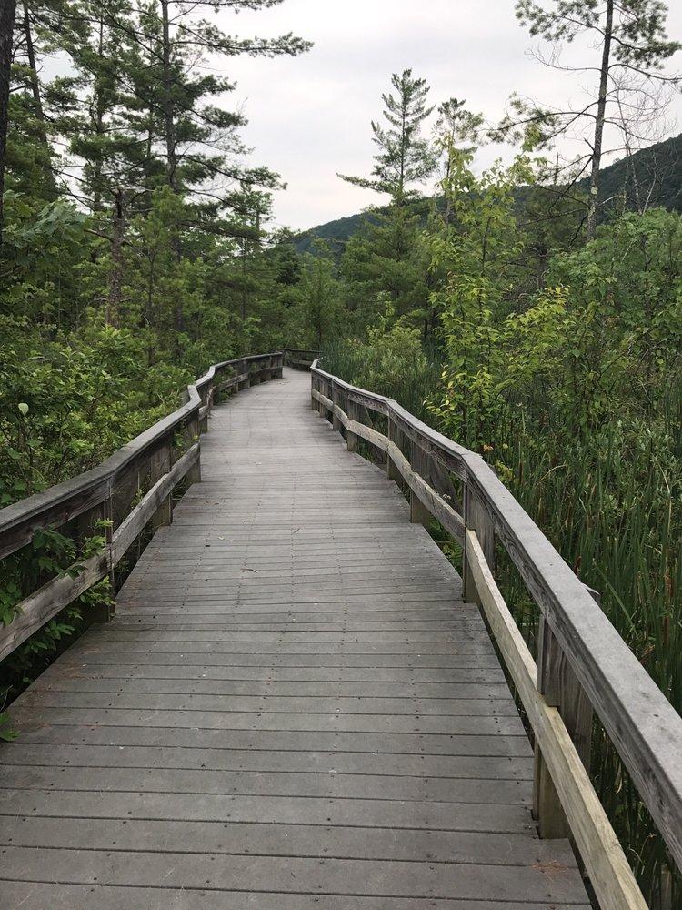 Highland Forest: 1254 Highland Park Rd, Fabius, NY